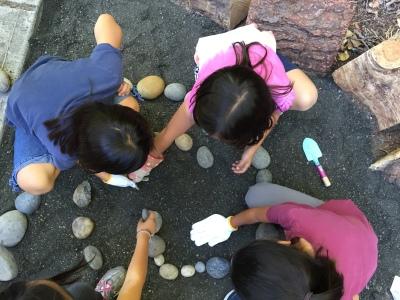Making a Rock Garden